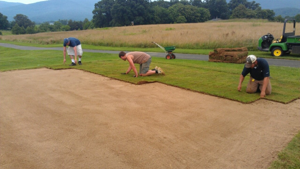 Golf Course Sod Work Clear Vision Turf